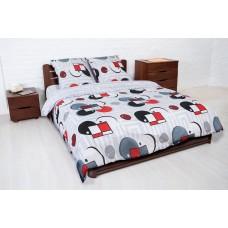 Комплект постельного белья Балакком бязь евро 200х215 (К-005 Дебют)